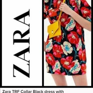 Zara TRF Collar Black dress with floral Applique